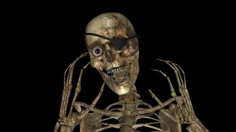 Vampire - Pirate Skeleton - Loop - Alpha stock footage