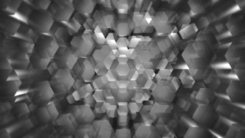 white hexagonal optic Animation
