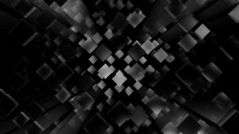 disco box white Animation