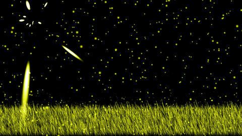 swing grass,shine stars at night,falling... Stock Video Footage