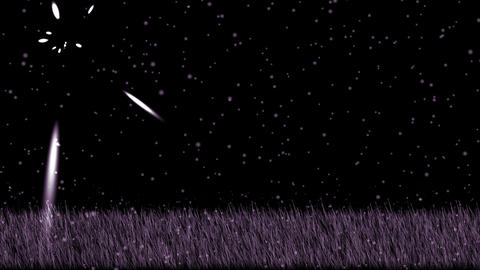 purple grass,shine stars at night,falling... Stock Video Footage