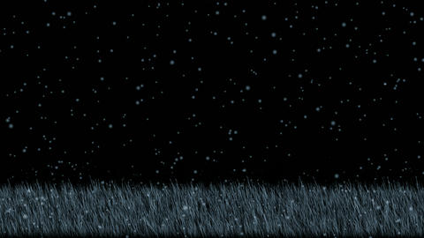 blue grass and snowflake.Grassland,wheat,barley,plant,parks,seedling,germination Animation