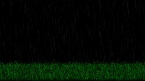 Rain,fresh spring grass at night,depth of... Stock Video Footage