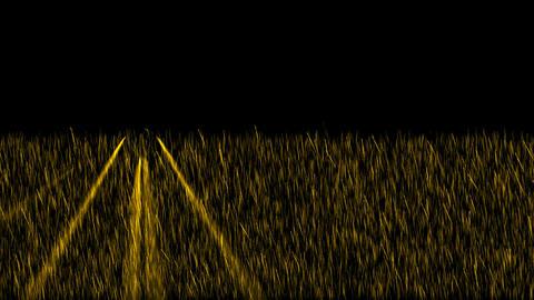 golden light exposure on the... Stock Video Footage