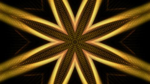 golden flower... Stock Video Footage