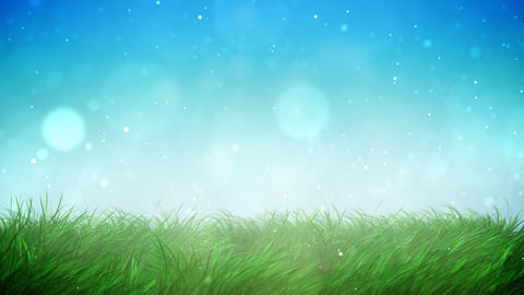 Sunny grass loop Stock Video Footage