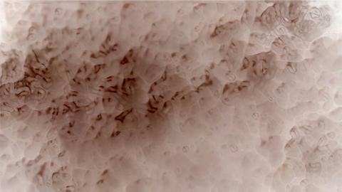 boil smoke,water,blisters,pimple,herpes,micro,cell,virus,cellular,honeycomb,hive.clouds,dust,storms Animation