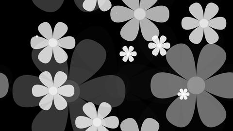 Tileable Monochrome Flower Pattern With Alpha stock footage