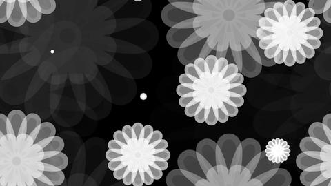 Tileable White Flower Overlay With Alpha stock footage