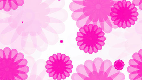 tileable pink flower overlay Animation