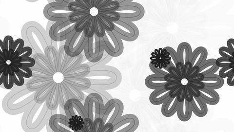 tileable greyscale flourist line Animation