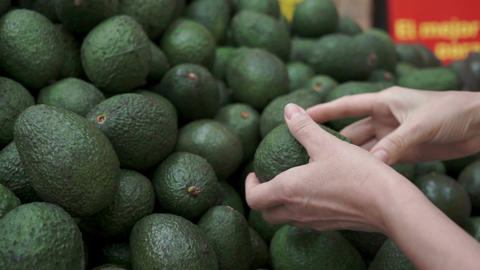 Woman Shopping For Avocados Handheld stock footage