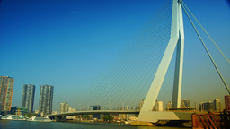The Erasmus Bridge links the northern and southern regions of Rotterdam Footage