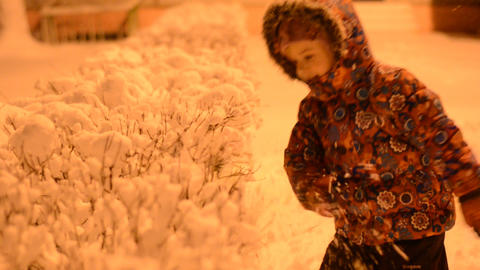 Little Girl Shake off Snow from Bush, Night Light Footage