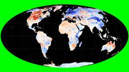 NASA NEO - LSTA. Molleweide. Graticule Animation