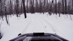 Snowmobile rides in the winter woods Footage