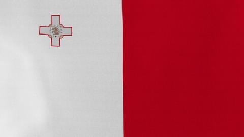 Loopable: Flag of Malta Footage