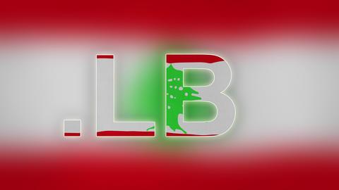 4K LB - Internet Domain of Lebanon Footage