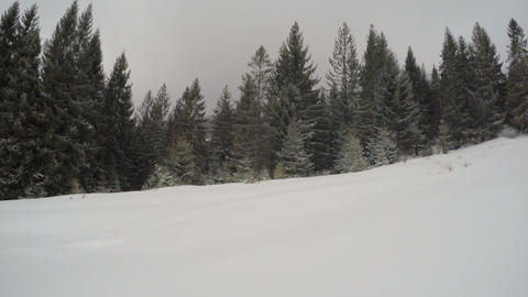 4k, Winter Landscape In The Mountains, The Trees In Hoarfrost stock footage