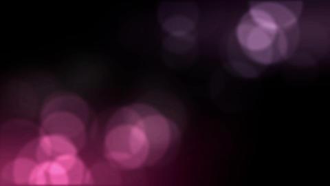 happylight Animation