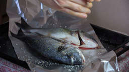 Man salting fresh dorado preparing for baking Footage