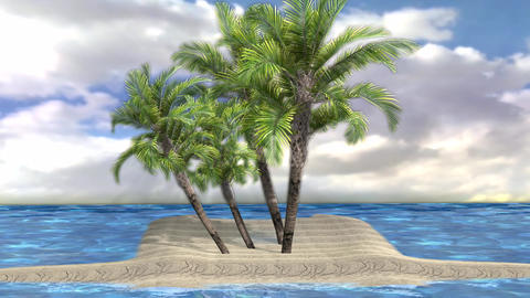 Beautiful Palm Tree on Lone islands HD Footage