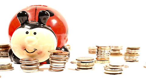 Ladybug Money Box and Coins 02 DOLLY right Footage