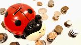 Ladybug Money Box and Coins and Putting Money In DOLLY Footage