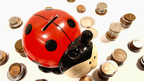 Ladybug Money Box and Coins and Putting Money In DOLLY Stock Video Footage