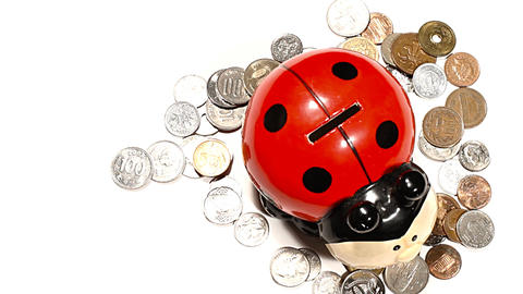 Ladybug Money Box with Coins PANs 01 high angle Footage