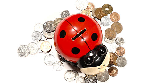 Ladybug Money Box with Coins PANs 01 high angle Stock Video Footage
