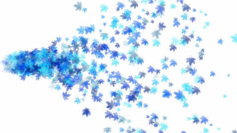 a group of blue maple leafs flying,seamless loop.pattern,symbol,dream,vision,idea,creativity,vj,beau Animation