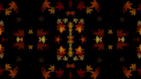 golden maple leafs shaped flower pattern.pattern,symbol,dream,vision,idea,creativity,vj,beautiful,ar Animation