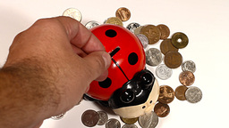 Putting Money into Ladybug Money Box and Coins 01 Stock Video Footage