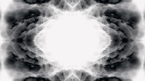 east lotus texture,black flower... Stock Video Footage