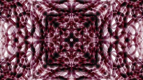 purple flower... Stock Video Footage