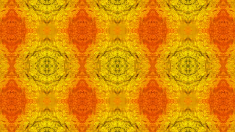 Luxury classical flower pattern,golden fancy ceramic... Stock Video Footage