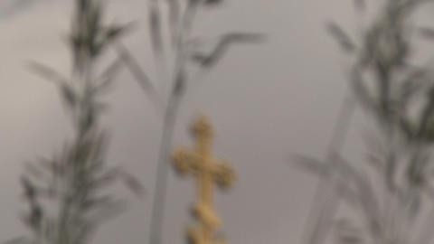 Oats Cross stock footage