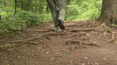 Feet On A Forest Path stock footage