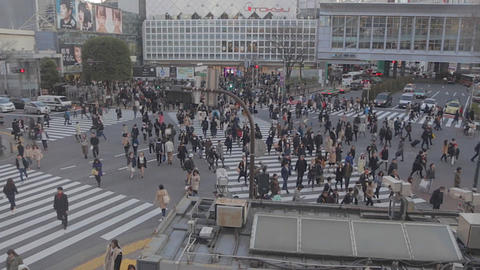 Wide Aerial with zoom Shibuya road crossing before sunset Live影片