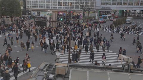 Aerial - Shibuya road crossing before sunset Live影片