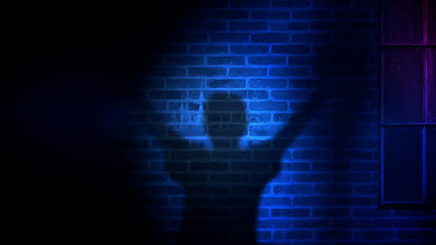 Police Light and Suspect Person Shadow Animation