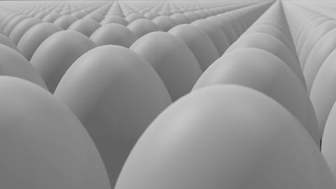 Eggs Animation