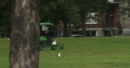 Small tractor cutting grass in a parc in Montreal Footage