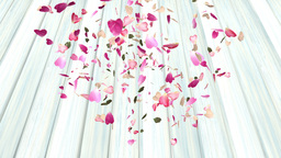 Rose petals drifting down onto wooden surface Animation