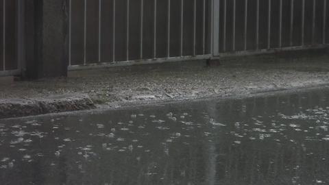 Rain 40 Footage