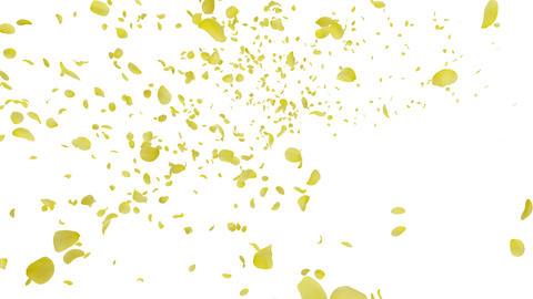 Rose petals yellow tornado Ja 4 K Animation