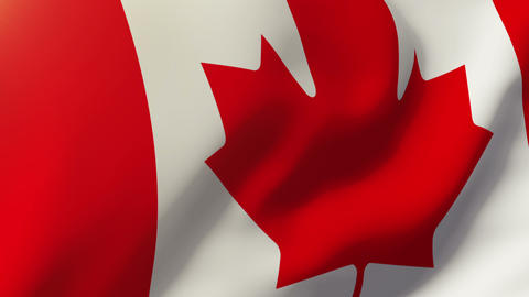 Canada flag waving in the wind. Looping sun rises style. Animation loop Animation