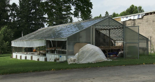 Small Greenhouse In An Organic Farm stock footage