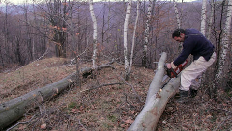 Wood cutters 08 Footage